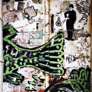 Grafitti aus Portugal Fisch mit Charlie